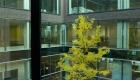 Concentra Antwerpen (7) aluminium ramen deuren glasgevels corswarem tongeren schueco shuco